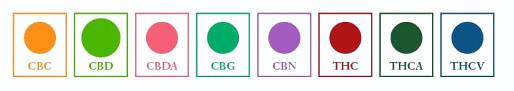 Eigenschaften und Wirkungsweisen von Cannabinoiden